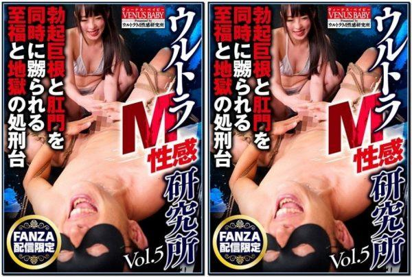 [HBVB-005] ウルトラサブセックスセンセーション研究所第5巻 Ultra Subs Sexual Sensation Research Institute Vol 5 973 MB