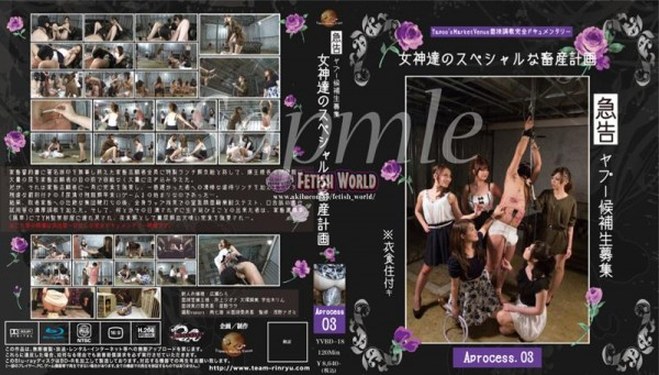 [YVBD-18] 広瀬ひろ 【BD】【03】■急告!!ヤプー候補生募集!!?衣食住付き~女神達のスペシャルな畜産計画 Urgent notice! ! Recruitment of Yapoo candidates! ! ? With food, clothing and shelter-Goddess' special livestock planning Aprocess 6.83 GB