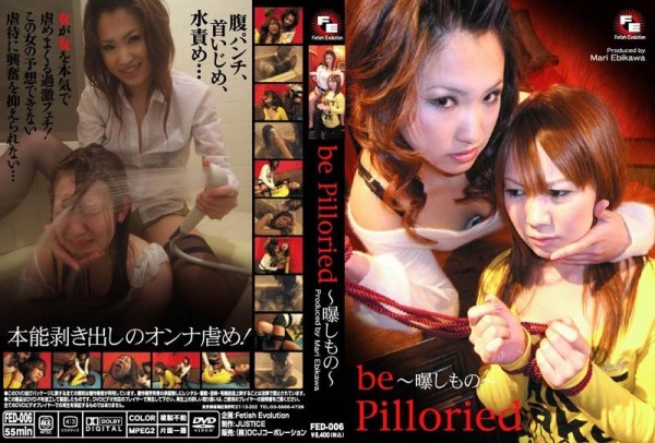 [FED-006] BE PILLORIED 曝しもの Fetish Torture その他フェチ Cowgirl Facesitting 416 MB